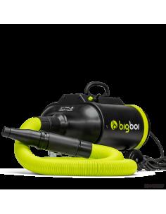 BigBoi BLOWR PRO Touchless dryer